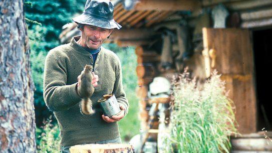 Dick Proenneke documentary, cabin, survivalist