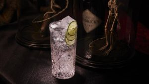 Holiday Drinks Ballistic Hendrick's Gin and Tonic