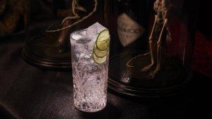 Holiday Drinks Ballistic Hendrick's Gin and Tonic