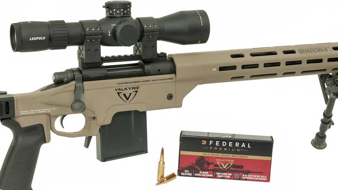 10 Manufacturers Currently Making Complete  224 Valkyrie Rifles
