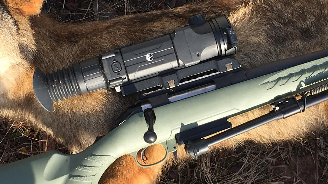 The Best Guns, Gear & Ammo for Bear Defense - Ballistic Magazine