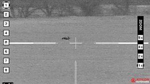 Jackrabbit Hunting, Texas Hunting