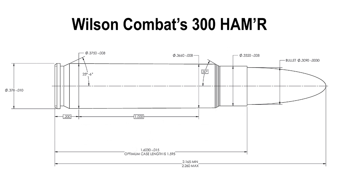 Wilson Combat 300 HAM'R cartridge, breakdown, ammo