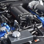Michael Sigouin, Muscle Cars, Blowndeadline, 2011 Shelby GT500, engine