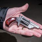North American Arms Range II Revolver, pistol, hand