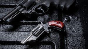 North American Arms Range II Revolver, pistol, lead