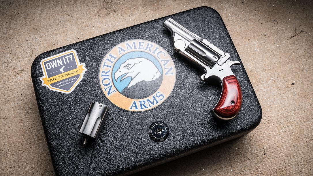 North American Arms Range II Revolver, pistol, safe