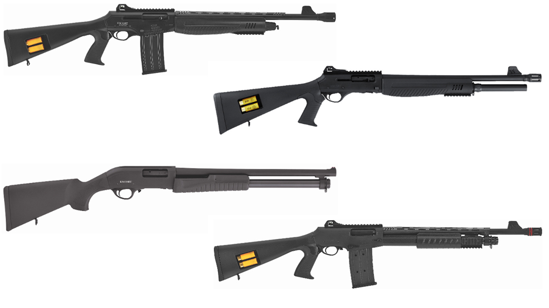 Escort Shotguns 2019 releases