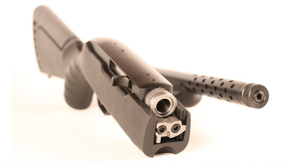 bugout rifle, .22 LR Rifle, apart