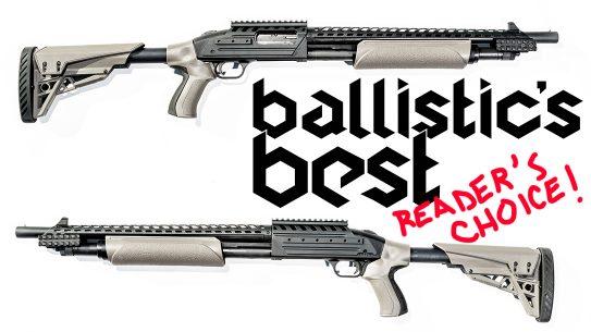 Ballistic's Best 2020 Reader's Choice Awards, reup