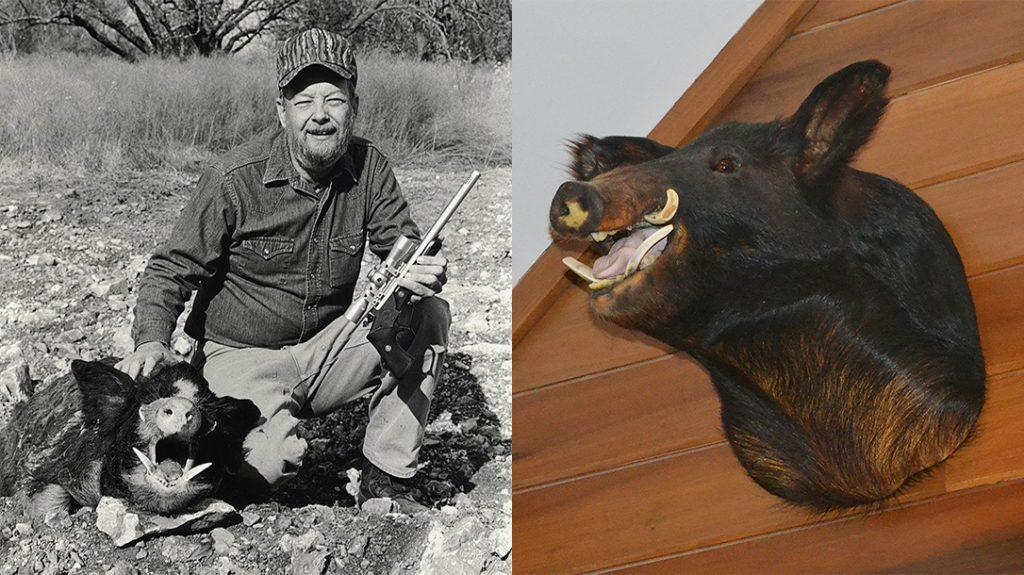 Boar Hunting, Hog Hunting, Hand Cannon