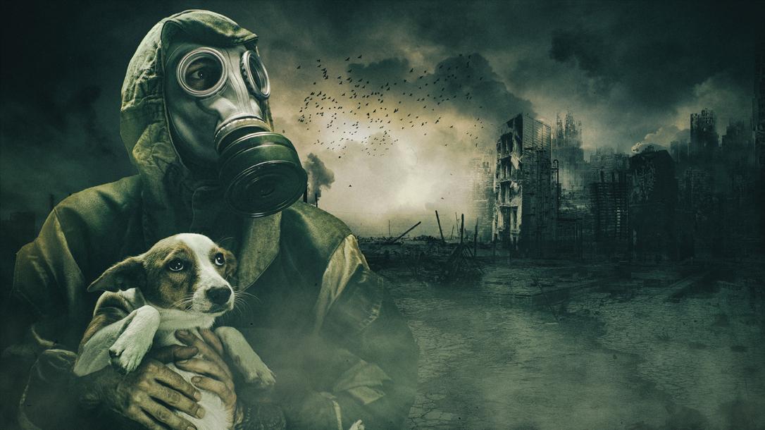 Eat your pet dog, dog recipes, apocalypse food