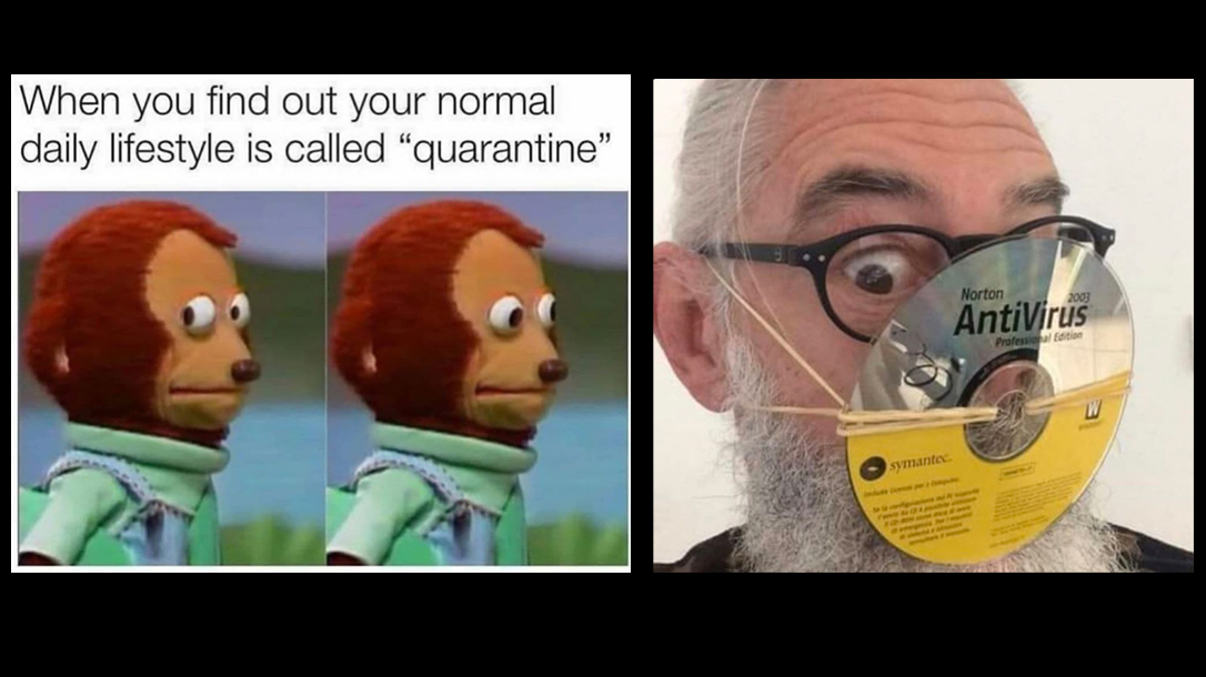 Quarantine Is My Life Meme