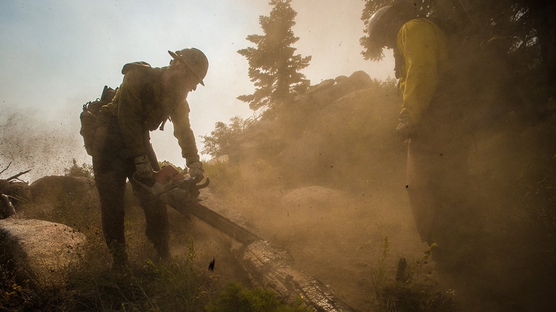 Smokejumper Clearing A Path