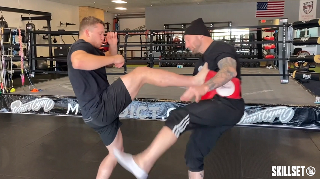 push kick, teep kick, fight defense