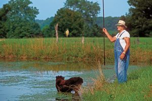 How To Weed Whack Bluegills