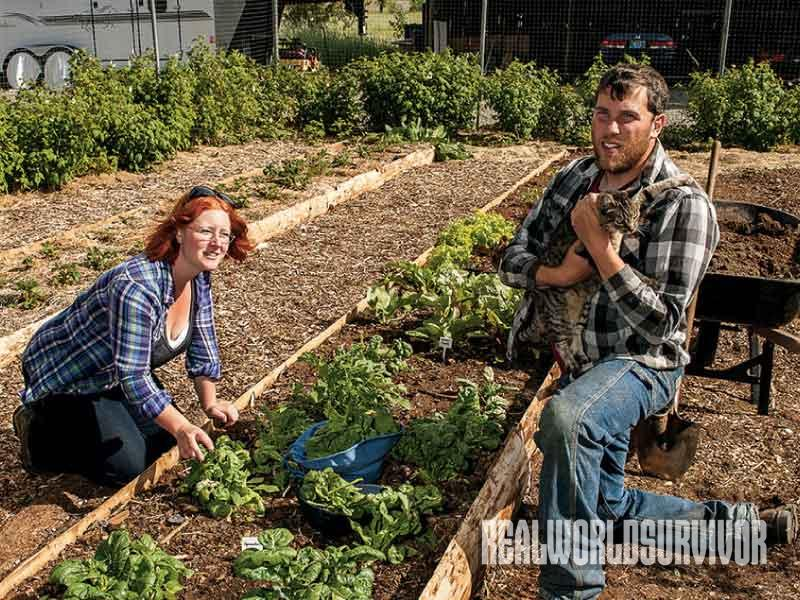 Farmers, Organic Farm