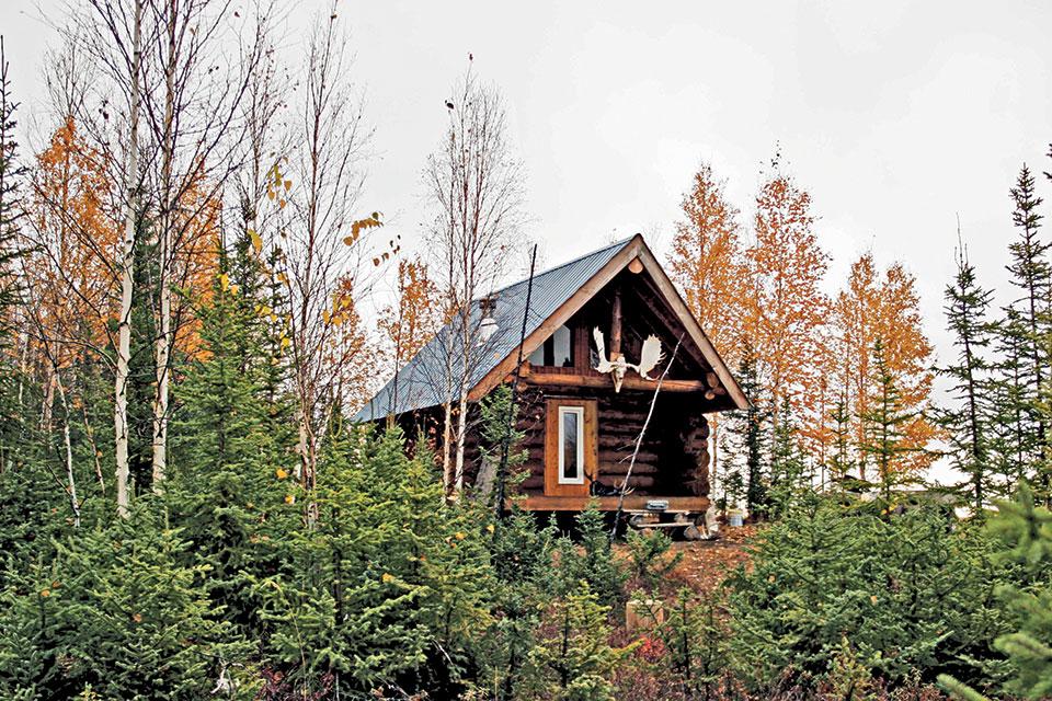 Blue Collar Cabin Builds Under 1 000