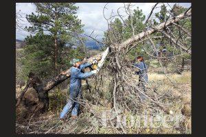 21st Century Wood-Burning |Rex & LaVonne Ewing