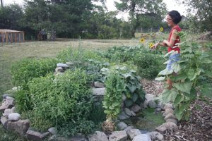 Herb Spiral permaculture
