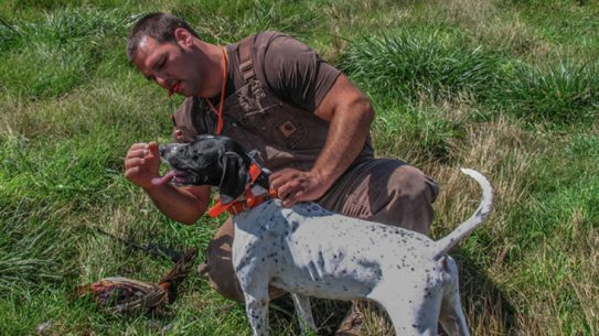 Survival Dog Training