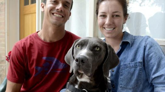 Boulder rescue dog