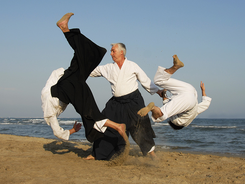8 Self-Defense, Martial Arts Disciplines