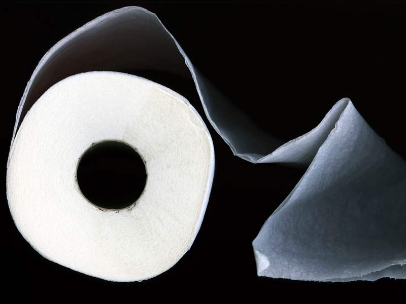 31 Vehicle Bug-Out Bag Toilet Paper