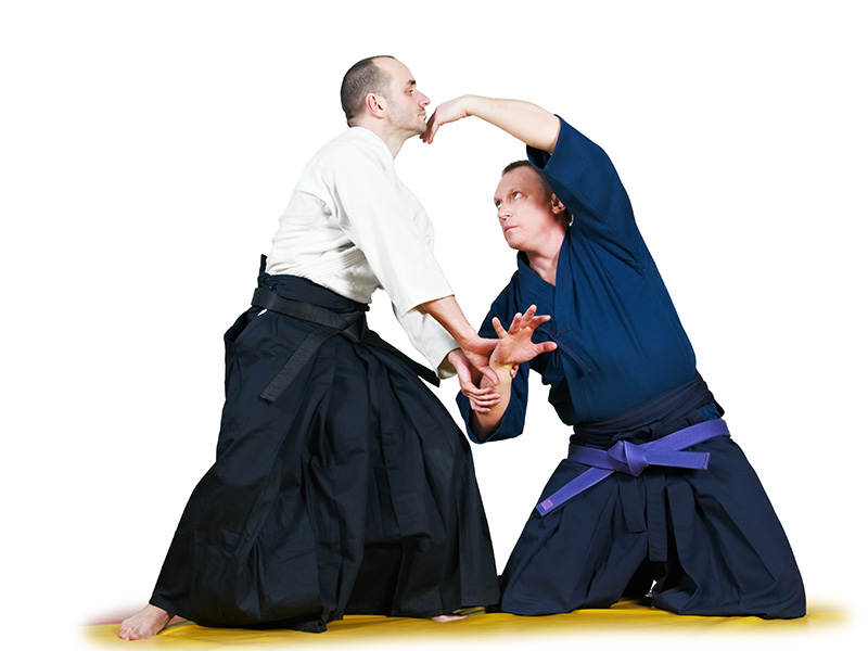 7 Japanese Jiu-Jitsu