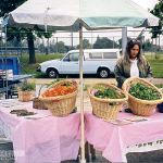 urban farmers market