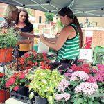 start a farmers market