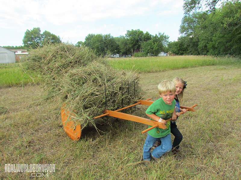 Using the Hay Rake/cart