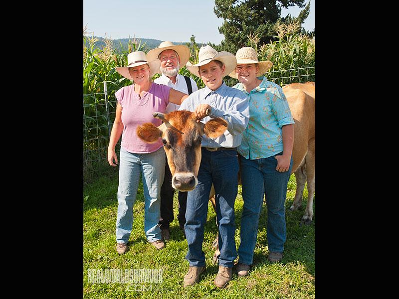 family milk cow