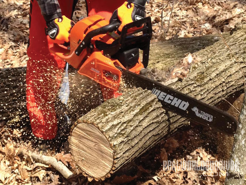 Chainsaw for firewood business