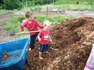 soil-building with mulch