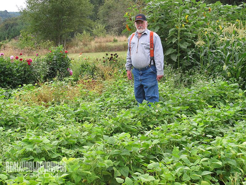 Steve Dicks subsistence garden