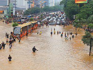 Post-Disaster Health Musts Sedge spring 2015 Jakarta disease
