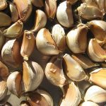 Immune-boosting foods garlic