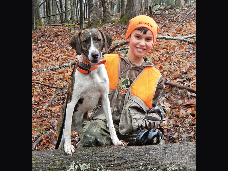 Well-Trained Mountain Cur