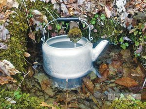 Spring-fed gravity water system
