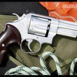 .357 Magnum Backwoods
