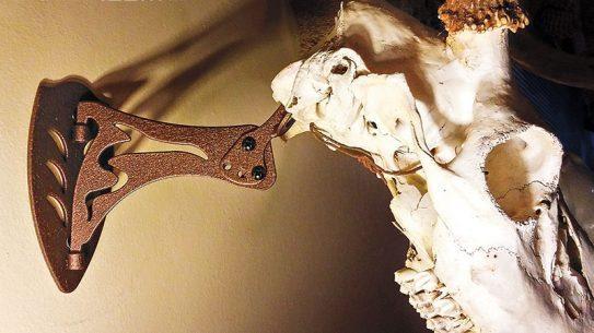 14 point buck skull hooker mounting