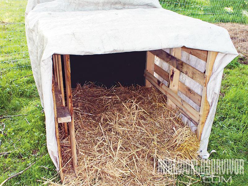 NP spring 2015 pig farming shelter