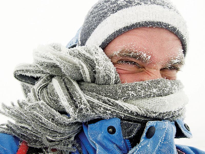 SEDGE Spring 2015 Winter Cold Kill
