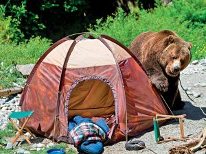 Backcountry Camping Survival Tips, backcountry camping, backcountry camping survival, camping survival