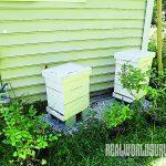 Angela's Bee Hive