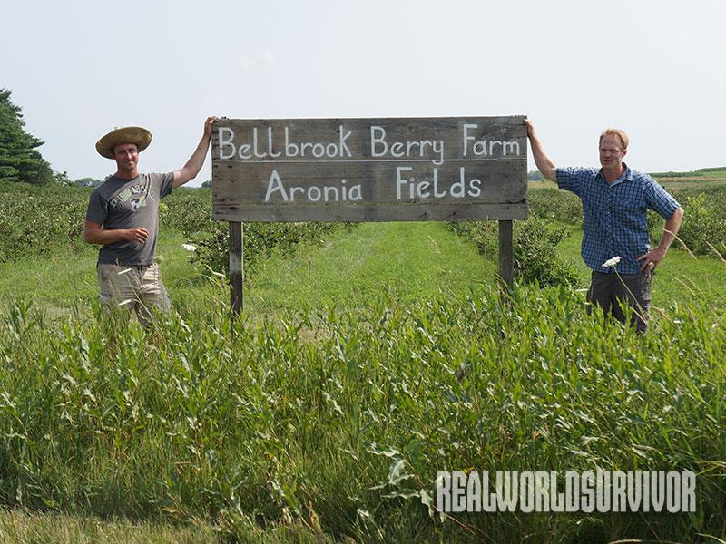 bellbrook berry farm