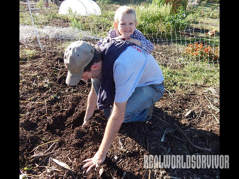 Soil Building For A Better Garden