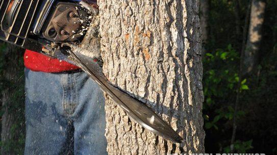 Hinge Cutting trees techniques