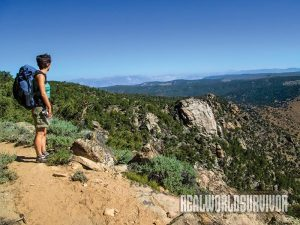 Pacific Crest Trail Sedge Summer 2015 lead
